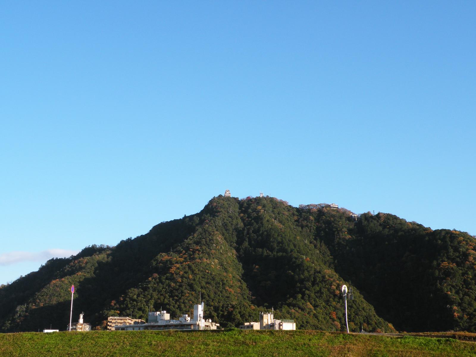 Gifujyo